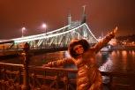 Elizebath bridge at night
